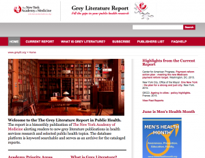 The Grey Literature Report Usability Study